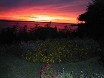 Flower Garden Backed by an Incredibly Firey Sunset