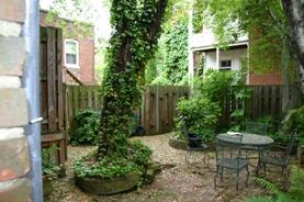 Urban Garden Before