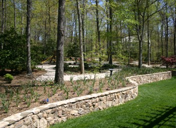 Woodland Garden with Paths and Stone Wall